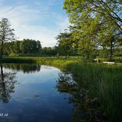 Fotograaf4U - Hitland Bos Capelle ad IJssel