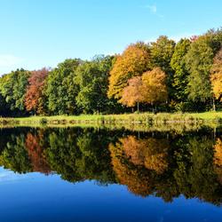 Haagse Bos met haar herfstkleuren