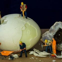 Litle Egg