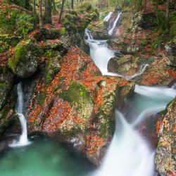 Autumn falls