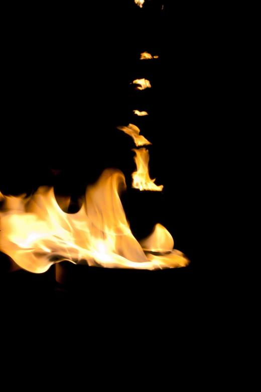 Vuur Boom - Deventer op Stelten. Worp plantsoen stond vol met potten vuur.