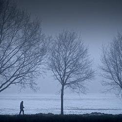 wandelaar in de vorst
