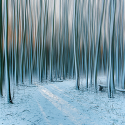 Winter.....