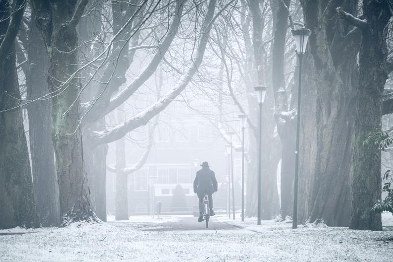 Witte wereld. - Prachtige ochtend na een sneeuwbui.  Weldra werd het mistig.  Alle storende elementen verdwijnen.  Wachten op de juiste persoon op de