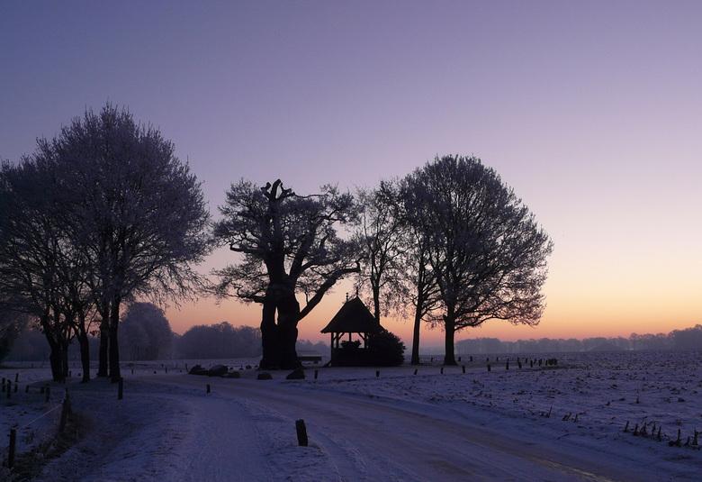 Kroezeboom Fleringen - De middelste boom is de oudste eik van Nederland. Vroeger gebrukte men het kappelletje voor kerkdiensten, tegenwoordig nog stee