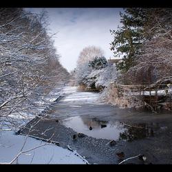 Winter in Amstelveen