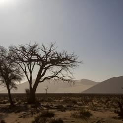 Namibië 57