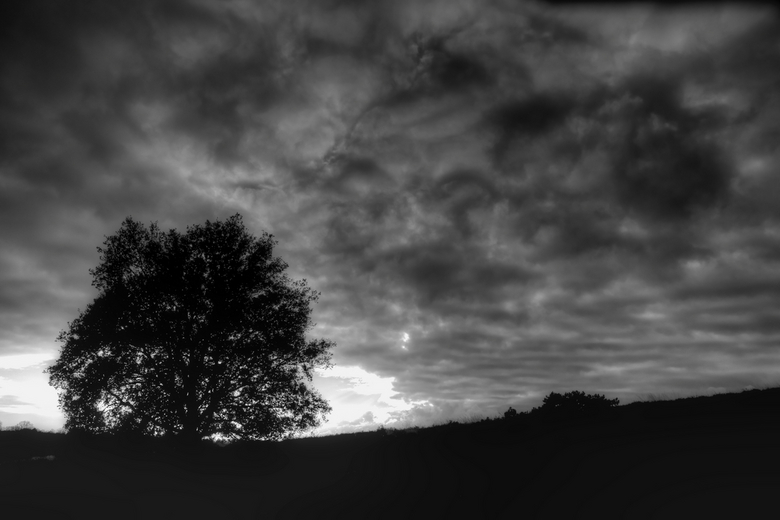 Posbank onder wolkendek - Tijdens een wandeling kwam dit wolkendek opzetten.