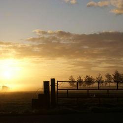 Zonsopgang in polder