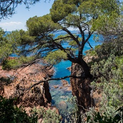 Paradijsje aan de Côte d'Azur