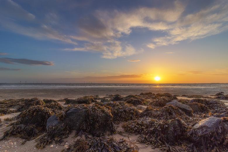 zonsondergang - Bij de oesterdam aan de oosterschelde mijn nieuwe objectief uitgeprobeerd. Ondanks de harde wind toch genoten