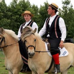 Noorse Paarden