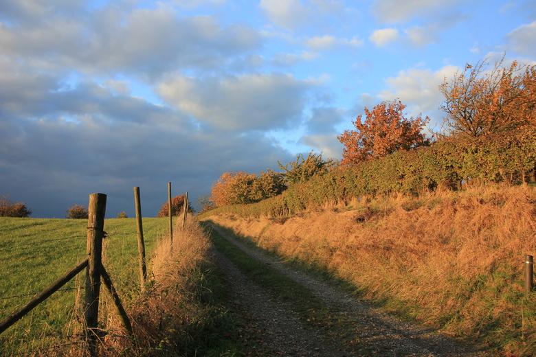 Autumn path -
