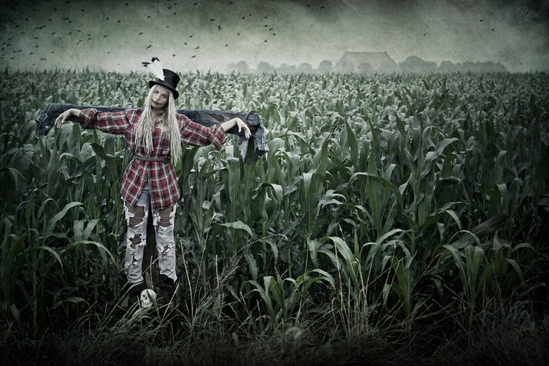 The Scarecrow... - Forever grounded,<br /> Limbs swaying in the breeze,<br /> Whispering in a voice only it can hear...<br /> <br /> Tell me how i