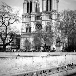 De Cathédrale Notre-Dame de Paris