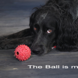 The ball is mine