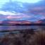 Lake Tekapo, Nieuw Zeeland