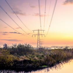 Licht in de polder