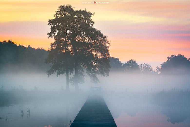 "Towards a Blanket of Fog - Towards a Blanket of Fog...<br /> <br /> Groeten Frederik<br /> Volg <a href=""http://www.vanderveerfotografie.nl"">www.va"