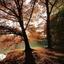 sonsbeekpark in volle herfstkleuren