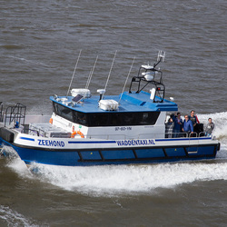 Waddentaxi