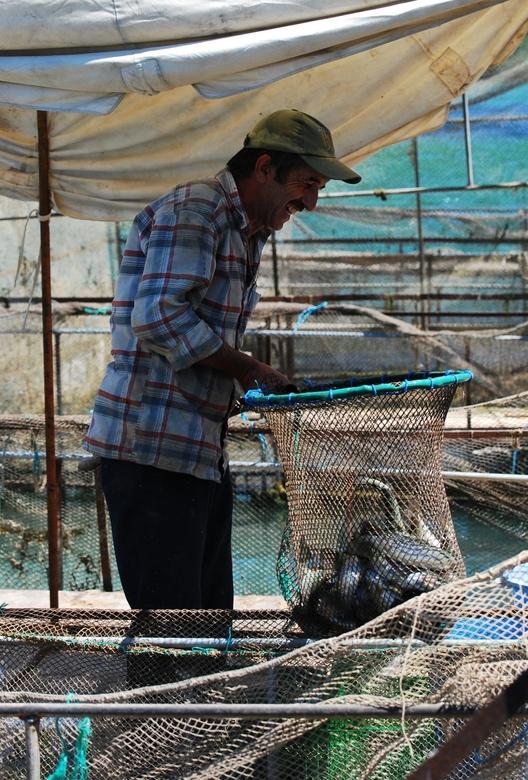 Onbekend Turkije? - Een forelkweker op de rivier nabij Manavgat in Turkije.Een beeld dat je zeker niet zal zien als je in het hotel blijft.Zeker de mo