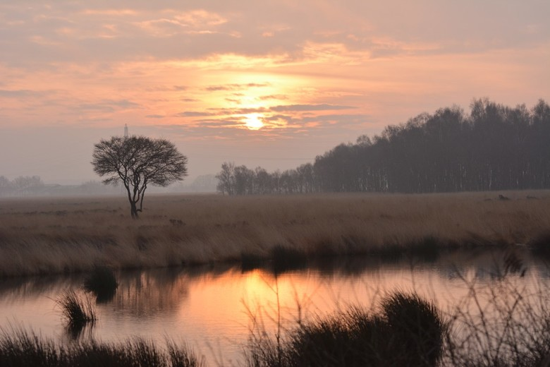 good morning world - zonsopkomst boven het Wierdense veen