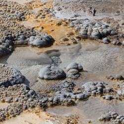 Yellowstone USA 6