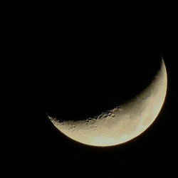 Wassende maan (31 jan. 2009)