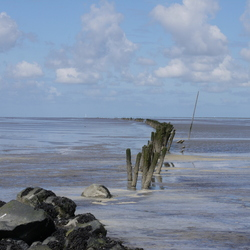 Waddenzee bij Den Oever