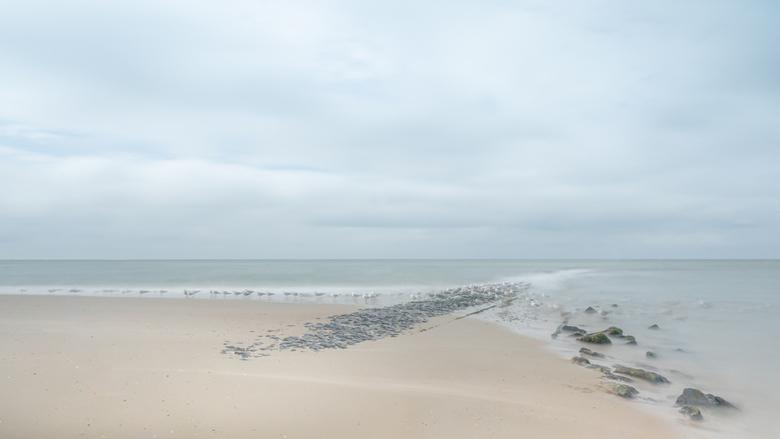 Leegte - Alleen de vogels zijn te zien in de het weidse landschap van de zee