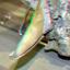 Otodus Megalodon Haaie-tand 3D
