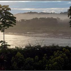 Zonsopgrang in het regenwoud