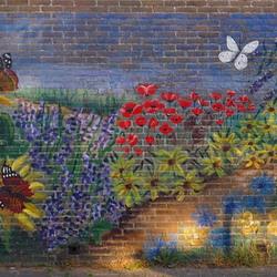 De Vlindertuin Alkmaar