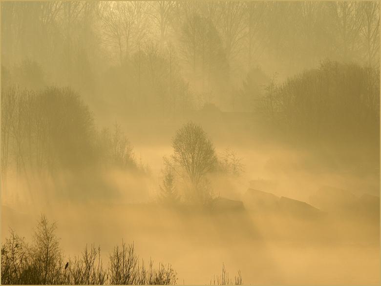Mist. - Mist in de vroege ochtend terwijl langzaam de zon doorkomt.