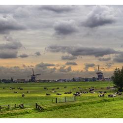 Dutch banality :)