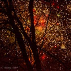 Ik heb het niet zo op vuurwerk, maar als ik het door de bomen zie, vind ik het toch wel iets magisch hebben.