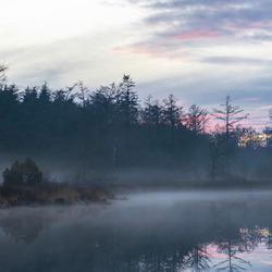 Foggy Lake (WINTER)
