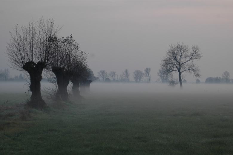 kleine wereld - vanmiddag ff snel op pad gegaan , de mist dringde zich al aardig over het land