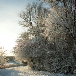 Sneeuw in Zeeland