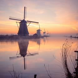Magisch mooie ochtend bij Kinderdijk