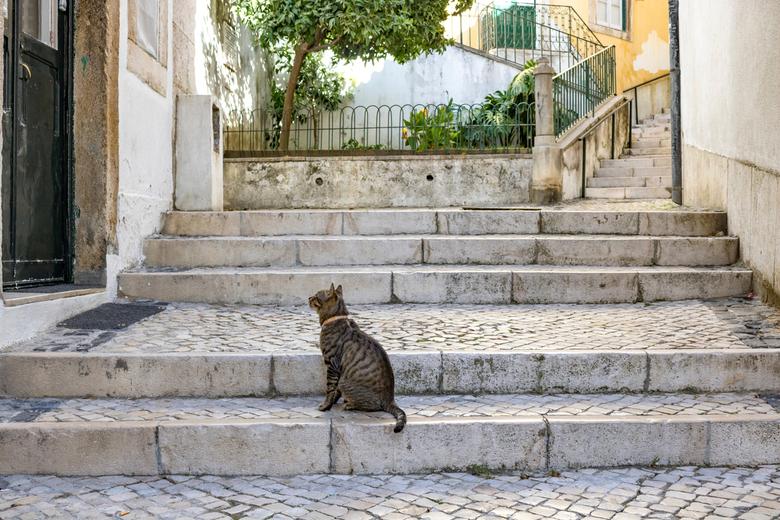 Een rustige zondagmorgen in Lissabon