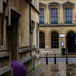 paarse paraplu