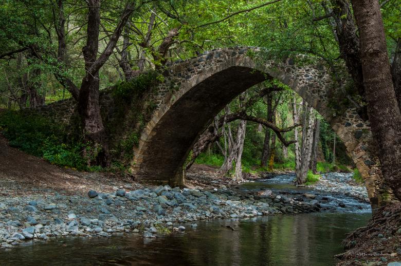 diep in het bos - Diep in het bos  was deze brug verstopt