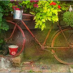 fiets bergheim fr