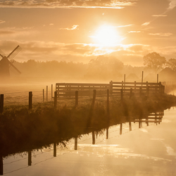 Holland Dawn