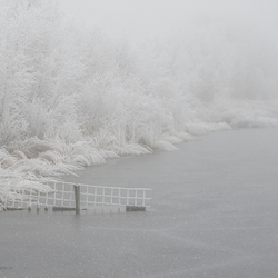 It's winter in the Netherlands. . . .