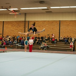 Flying Gymnast.jpg