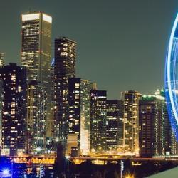 Skyline Wheel
