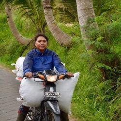 Unesco rijstveld